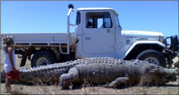 澳洲土著居民射杀巨型鳄鱼-神奇动物-玉环纵纵横-三
