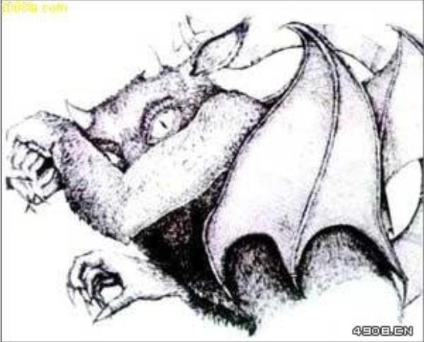 仙鹤的脚简笔画