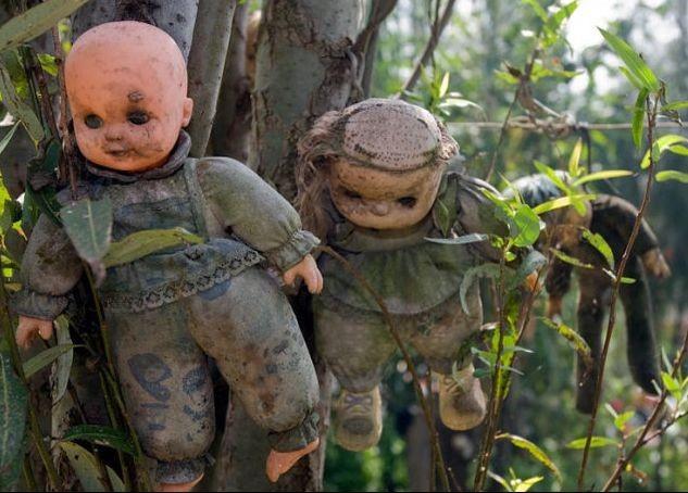 墨西哥的娃娃岛(也有称为玩偶岛)一直有一种