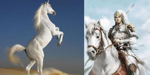 中国古代十大名马:赤兔即汗血宝马-神奇动物-玉环纵