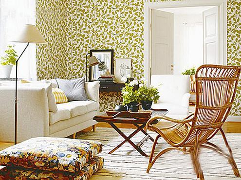 室内绿植手绘图